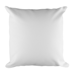Square Pillow Case w/ stuffing